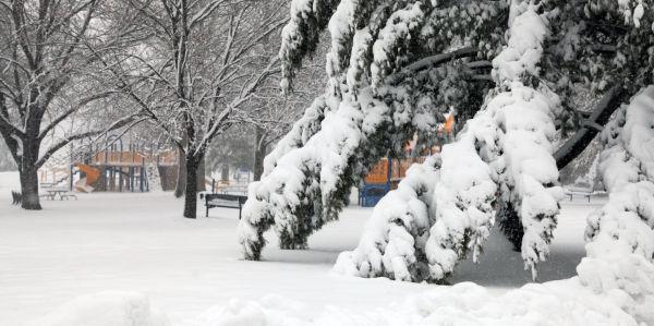 025 March Snow.jpg