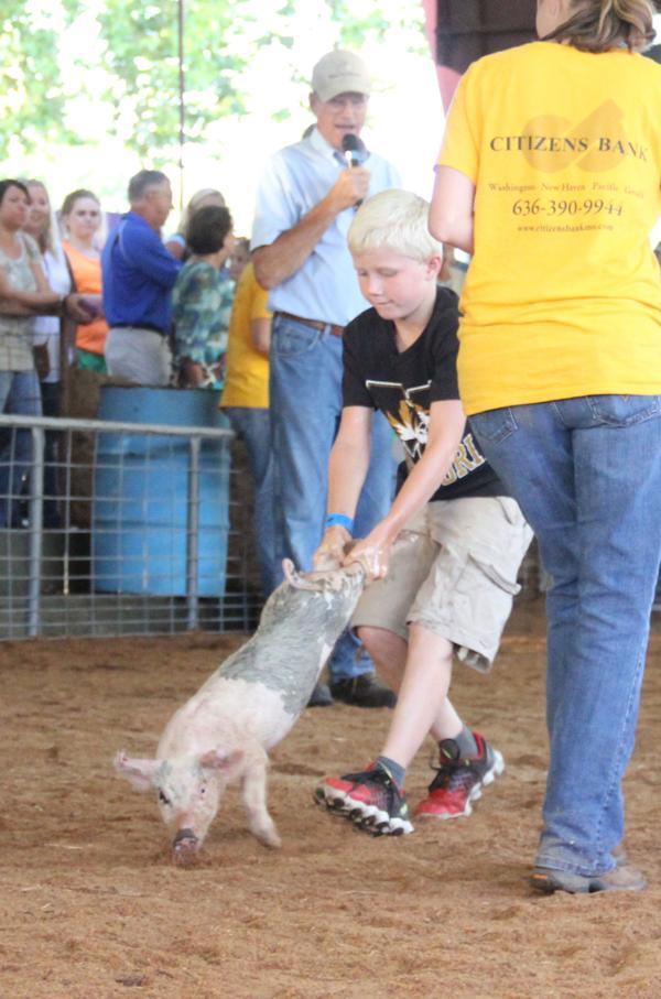 013 Fair Pig Chase 2014.jpg