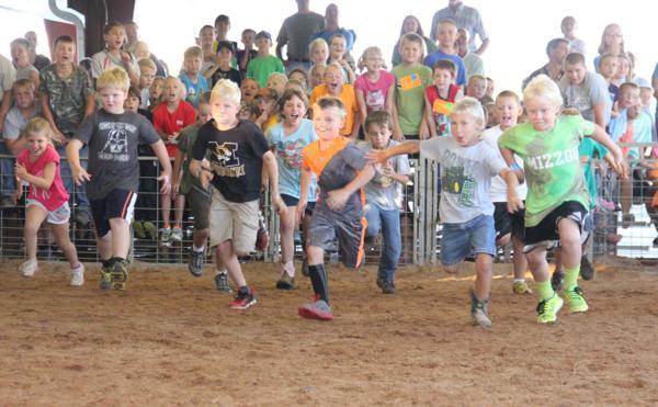 011 Fair Pig Chase 2014.jpg