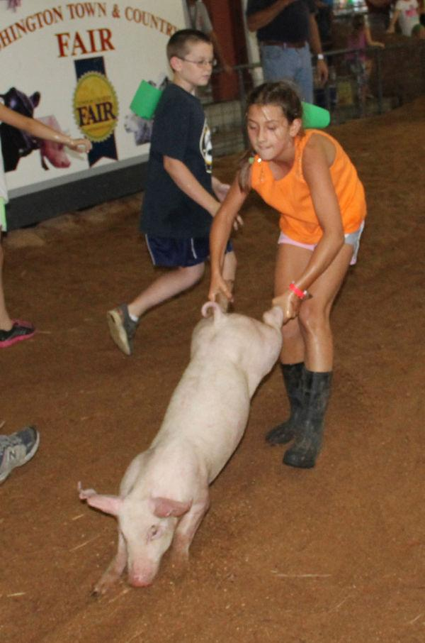 029 Pig Chase 2013.jpg