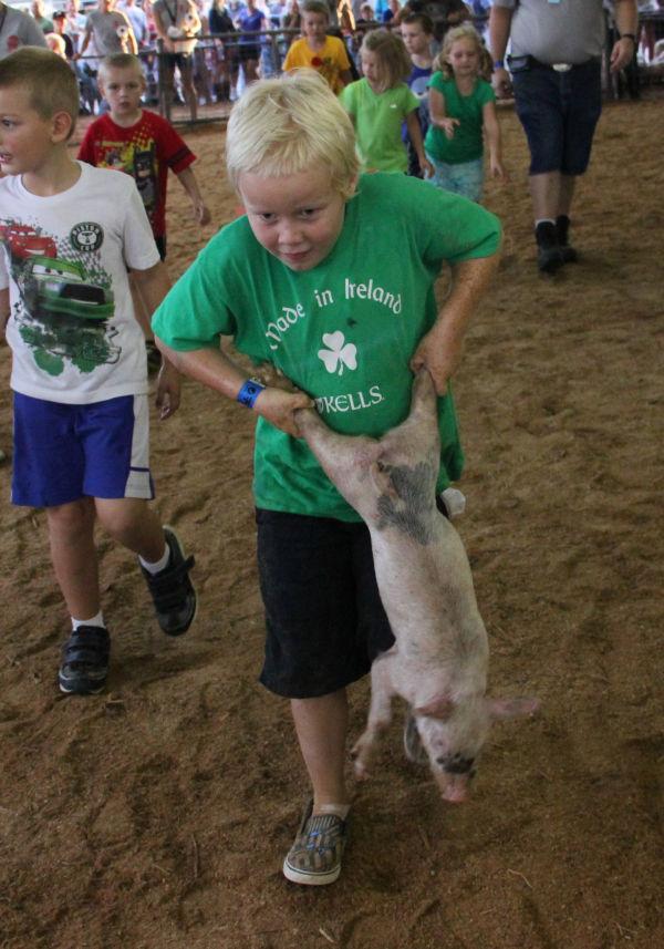 017 Pig Chase 2013.jpg