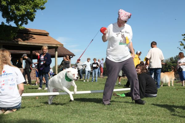 011 Strut Your Mutt 2013.jpg