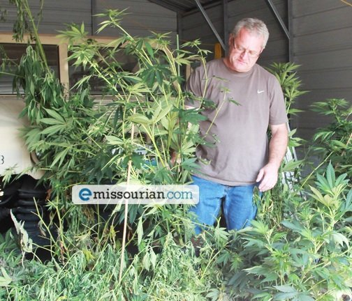 Busts Marijuana Growing Operation