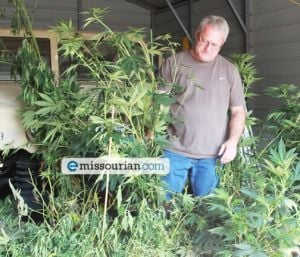 Task Force Busts Marijuana Growing Operation