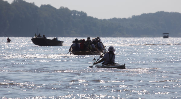 017 Race for the Rivers 2013.jpg