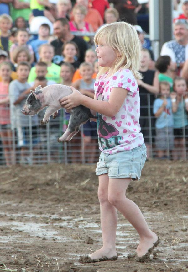 002 New Haven Youth Fair Pig Chase 2013.jpg
