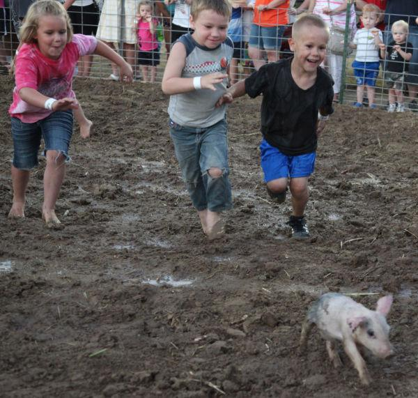 013 New Haven Youth Fair Pig Chase 2013.jpg