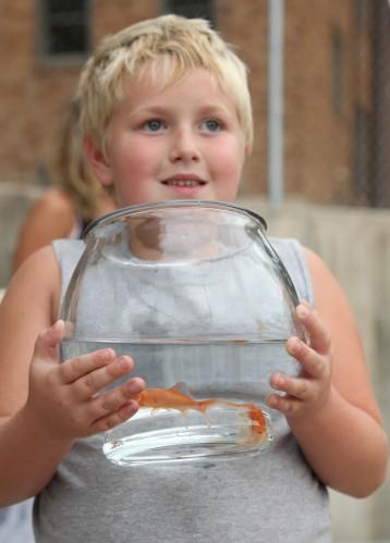 046 Goldfish.jpg