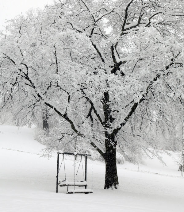 009 March Snow.jpg