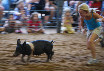 008 Washington Fair Pig Chase.jpg