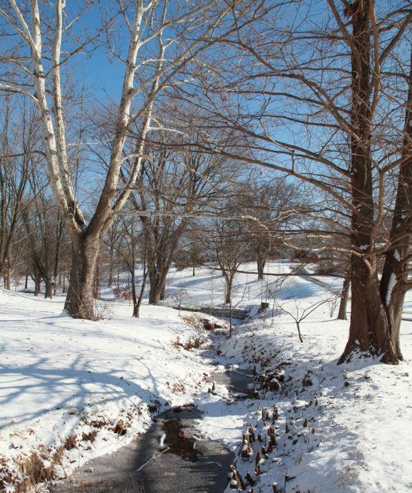 005 Snow Jan 2 2014.jpg
