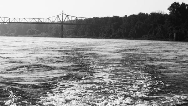 001 Scenes from the River Aug 2013.jpg