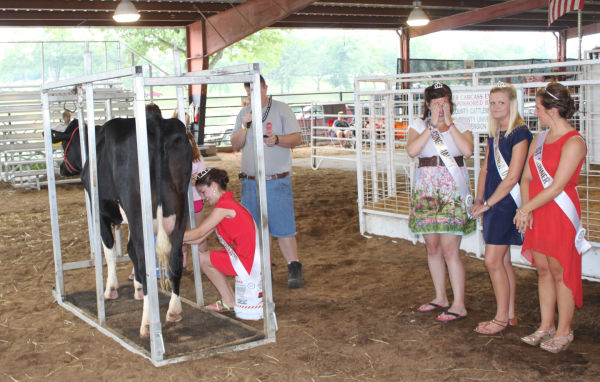 010 Milking Contest 2013.jpg