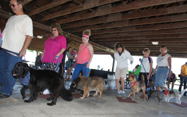 023 Strut Your Mutt 2013.jpg
