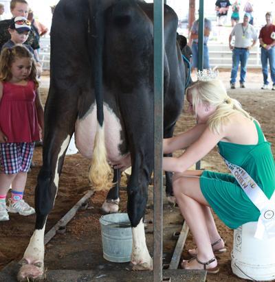 011 Fair Milking Contest.jpg