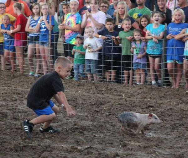 011 New Haven Youth Fair Pig Chase 2013.jpg