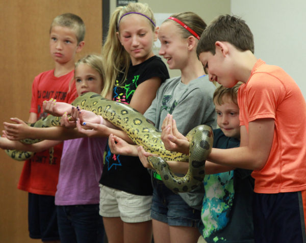 035 Reptile Show at Library 2014.jpg