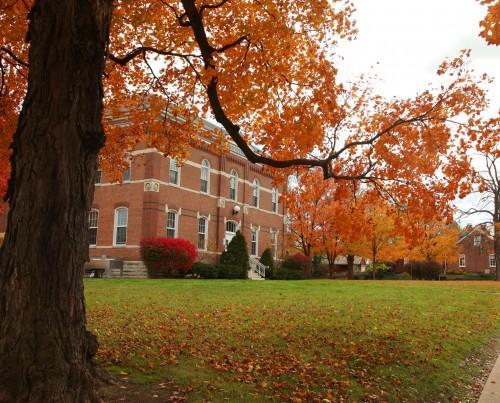 012 Fall trees.jpg
