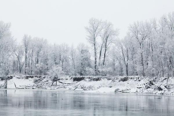 038 Snow December 14 2013.jpg
