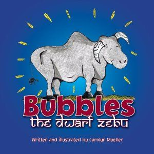 'Bubbles the Dwarf Zebu'