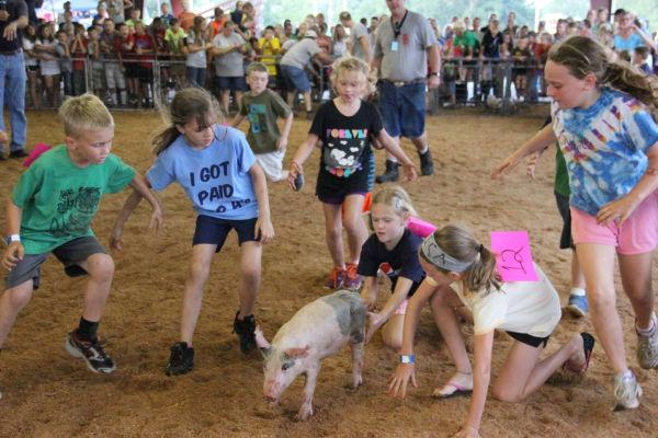 024 Pig Chase 2013.jpg
