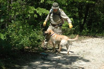 K-9 Unit Searches Area on Hidden Lake Road