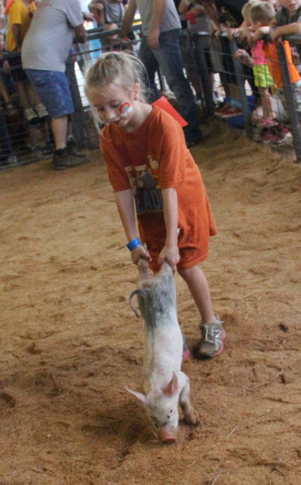 009 Pig Chase 2013.jpg