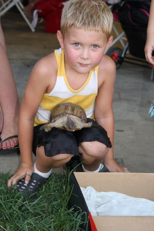 006 Fair Turtle Race.jpg