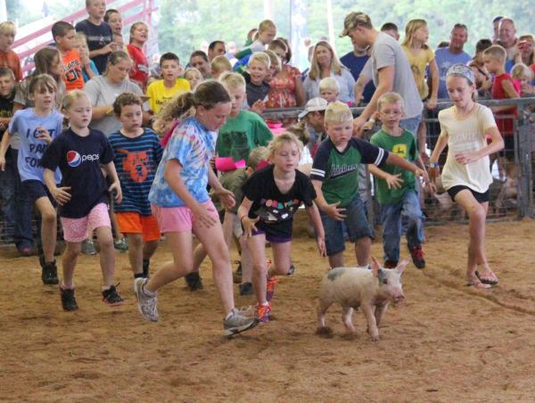 022 Pig Chase 2013.jpg