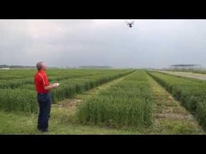 Video: Drone on the farm