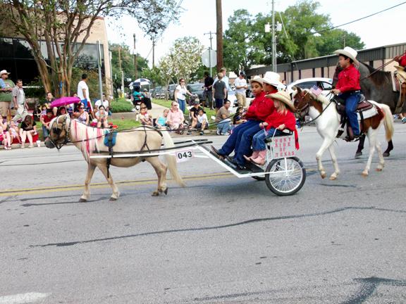 Pony Ride Universal (43A)