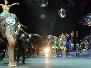 Raw: Final Ringling Bros. Elephants Performance