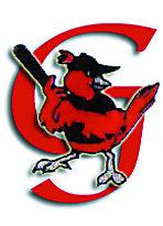 Geneva Red Wings