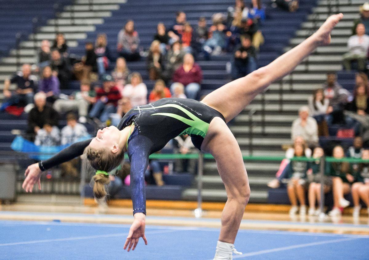 winterfest 2015 gymnastics meet