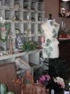Flower shop opens in Wahoo
