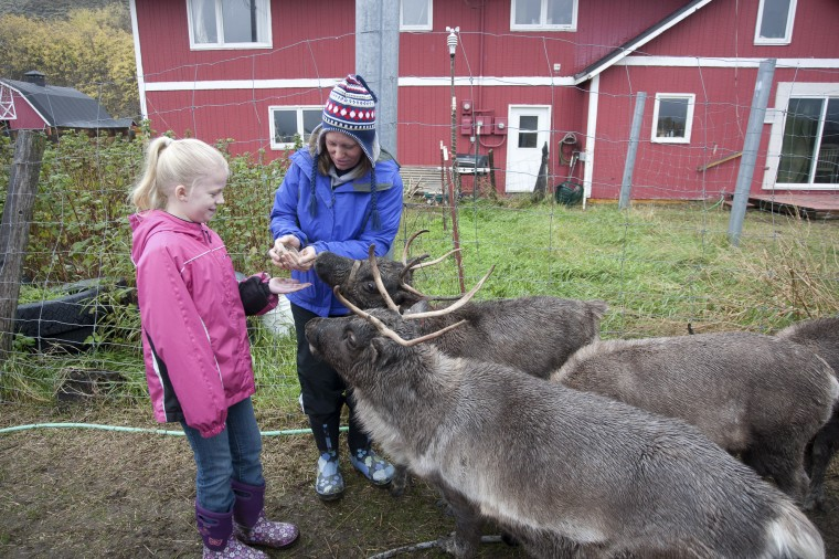 Fall Family Fun Day at the Reindeer Farm