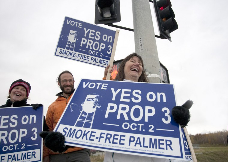 Election day sign wavers
