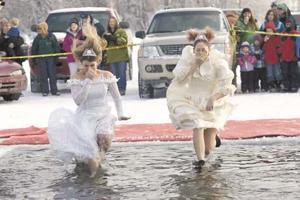 Polar Plunge brides
