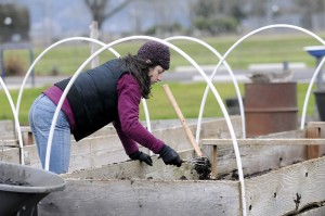 Photo from Corvallis GT article on the CCE MLK Jr Service Day projects