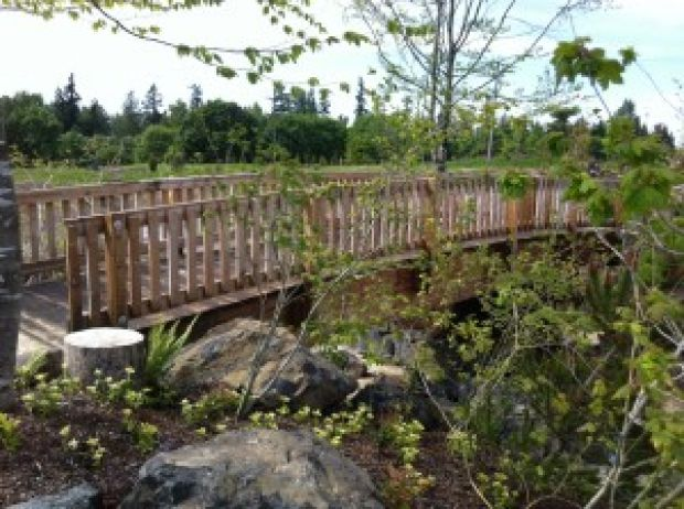 Talking Water Gardens Add To Albany 39 S Trails