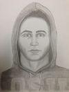 Suspect sketch