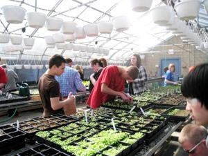 Master Gardeners to celebrate Earth Day