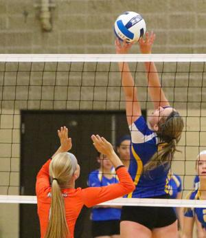 Photos: NIACC volleyball