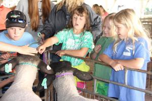Photos: Farm safety day