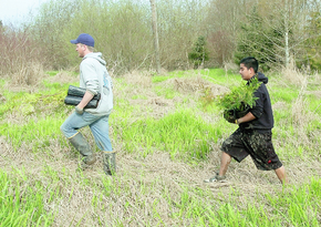 Students get hands-on lesson at Nookachamps restoration site