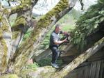<p>Mark Pearson shows off the king of hiding places, where a lock box full of clues or treasure may be found. Scott Terrell / Skagit Valley Herald</p>