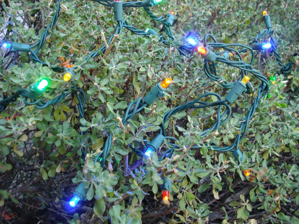 Rosie On The House Tips For Decking Your Halls Safely