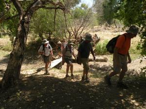 Sahuarita Hiking Club