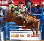 Nothin' is more Western than a rodeo, and Tucson turns on all things Western for the 90th year of the Tucson Rodeo, which opens Saturday, Feb. 21, for nine days of saddled horses, cowboy boots, barrel racing, steer wrestling and barn dancing.
