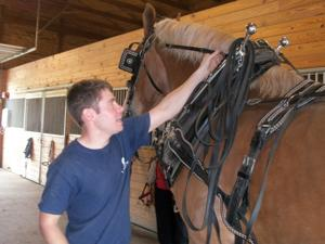 Equine Careers Camp offers unique opportunity for serious horse lovers